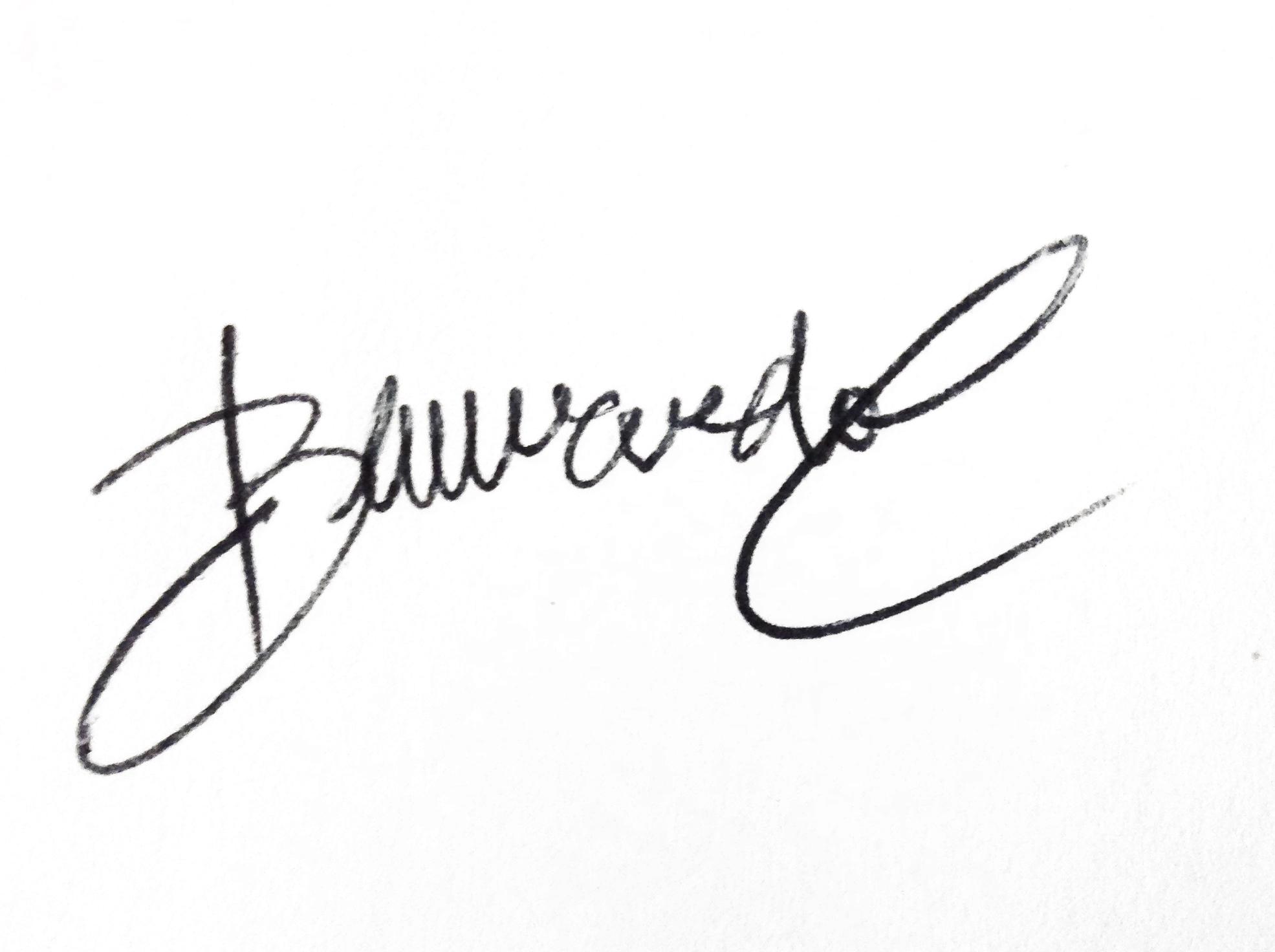 bernardo castañeda's Signature