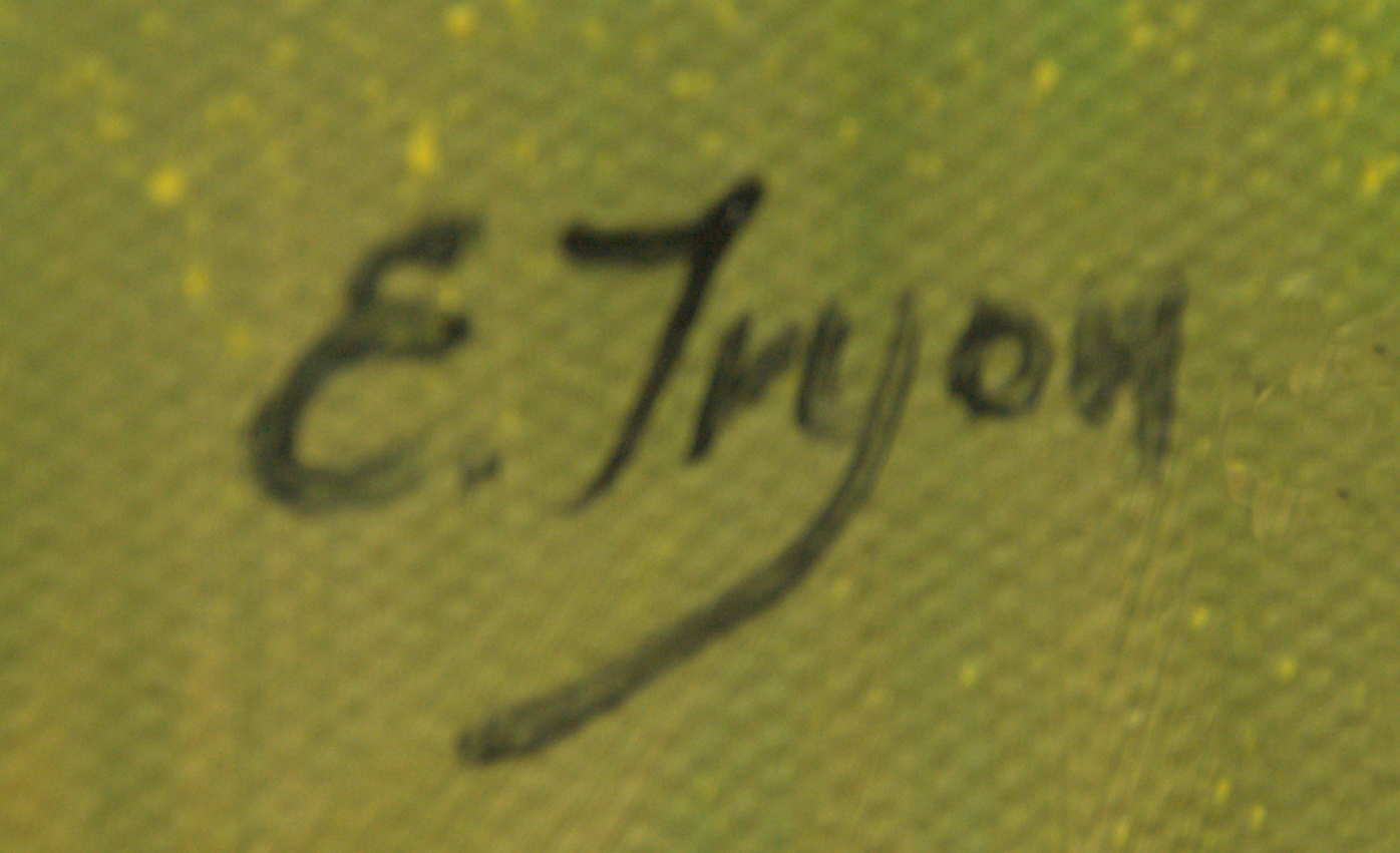 Ellie Tryon-Elgin's Signature