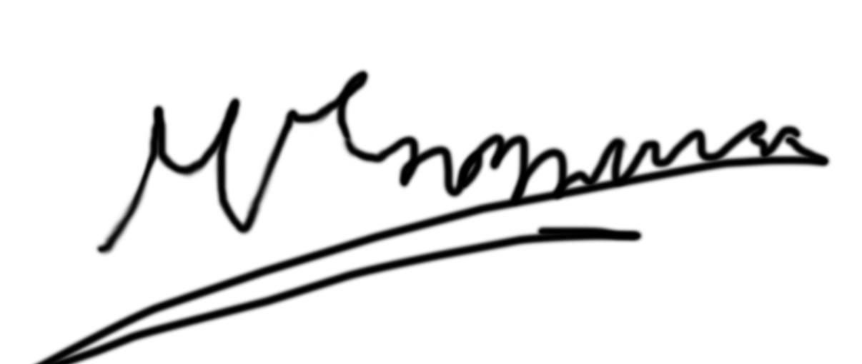 George Martzoukos's Signature
