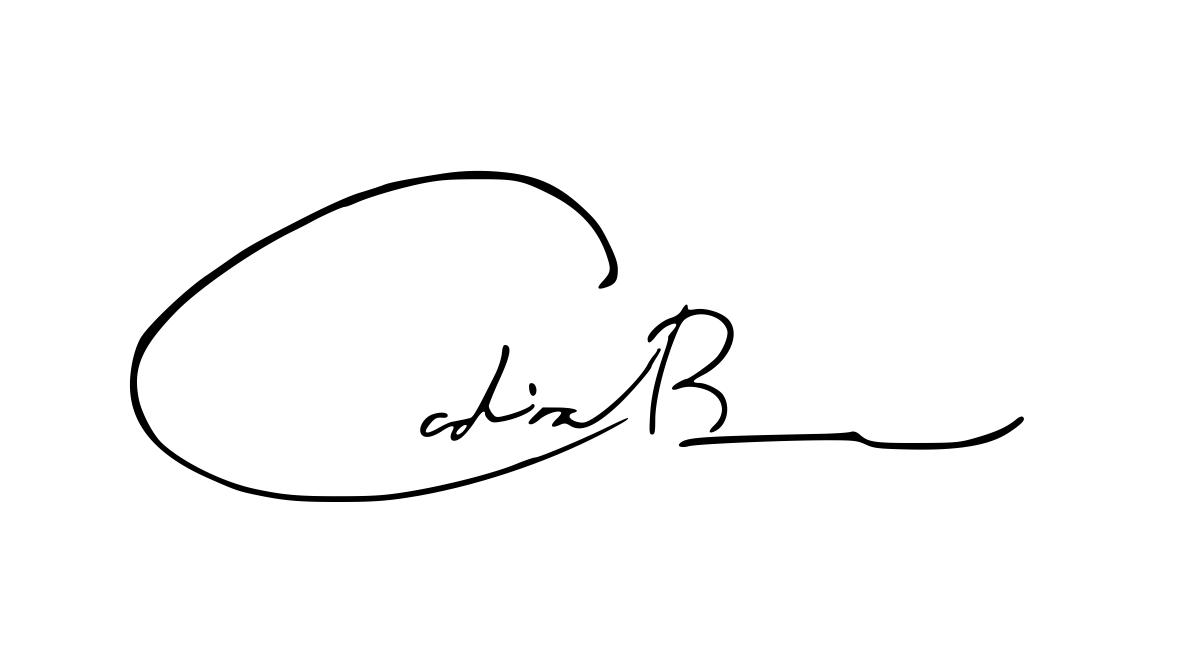 cADIA bRAIMA's Signature