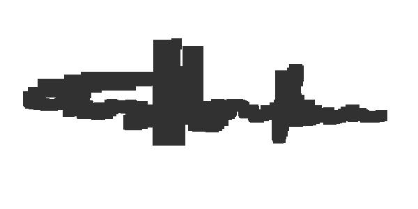 Teruyo Horikawa's Signature