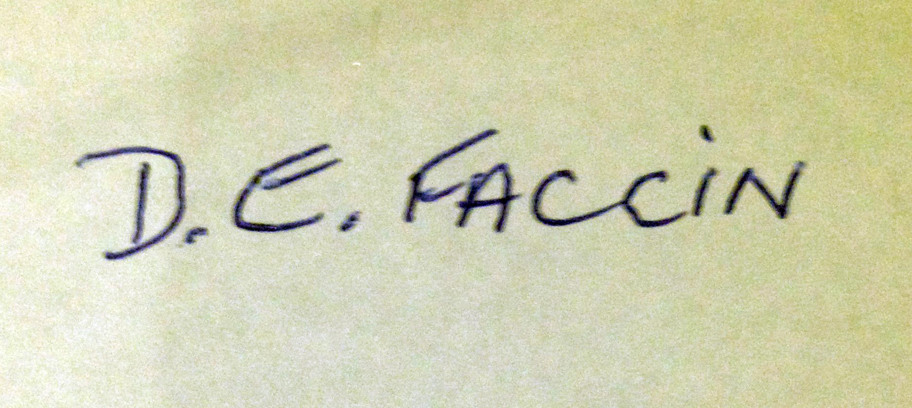 Dianne Faccin's Signature