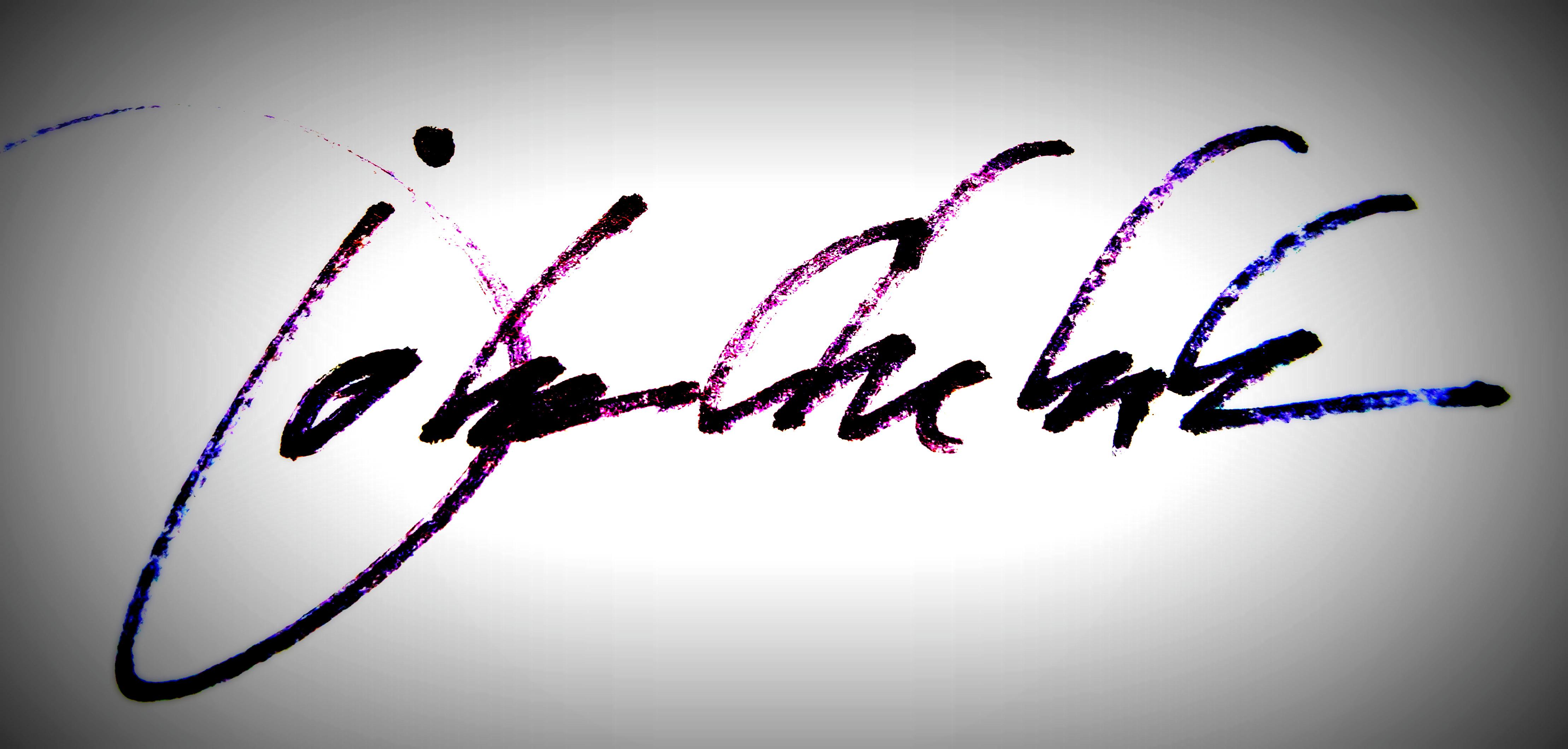 john chehak's Signature