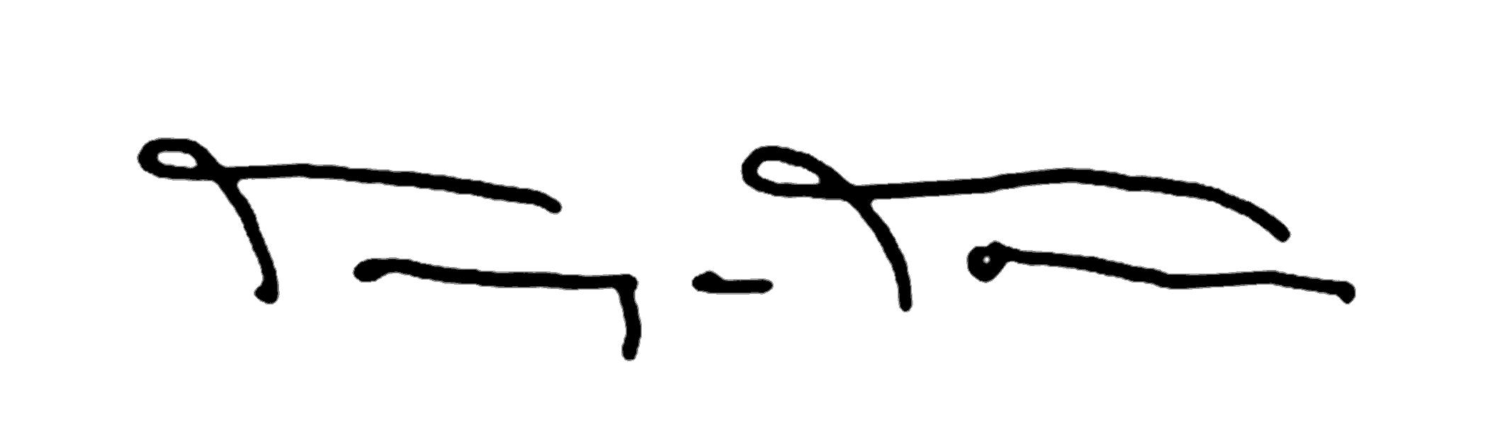 Tanya Torres's Signature