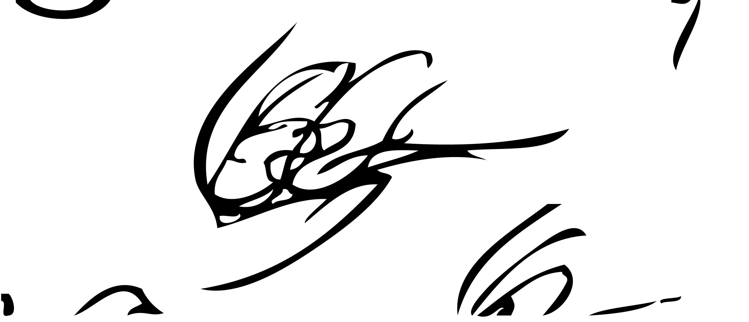 Liam Garrett's Signature