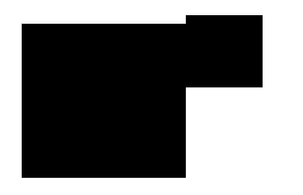 Ajae SamARTINO's Signature