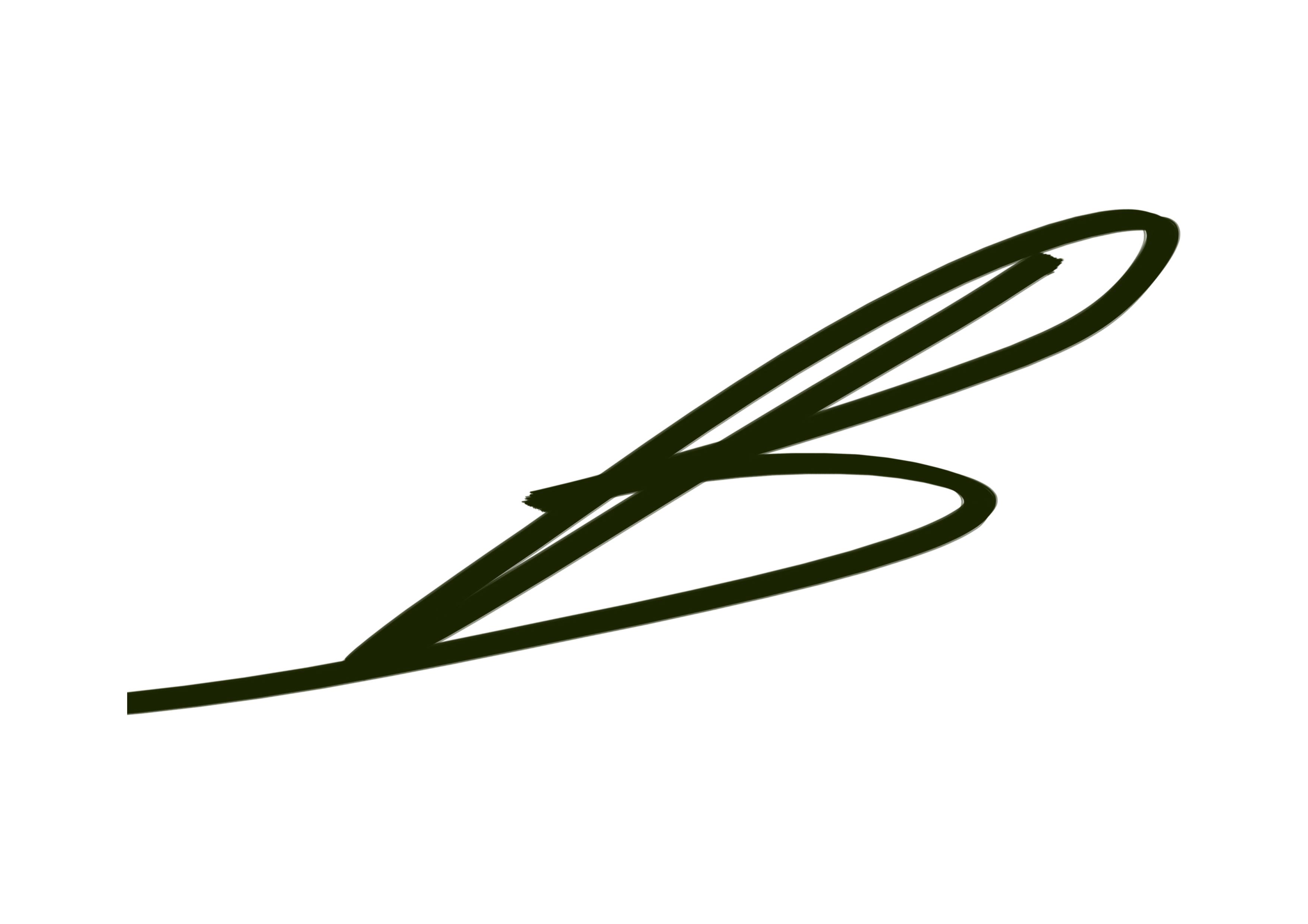 Burkhan Baykara's Signature