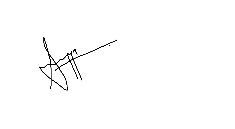 sumayya bagwan's Signature