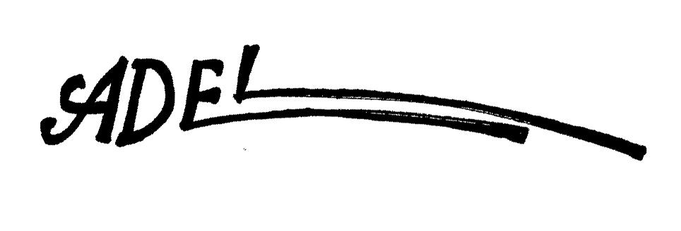 adel aBDEL- RAHMAN's Signature