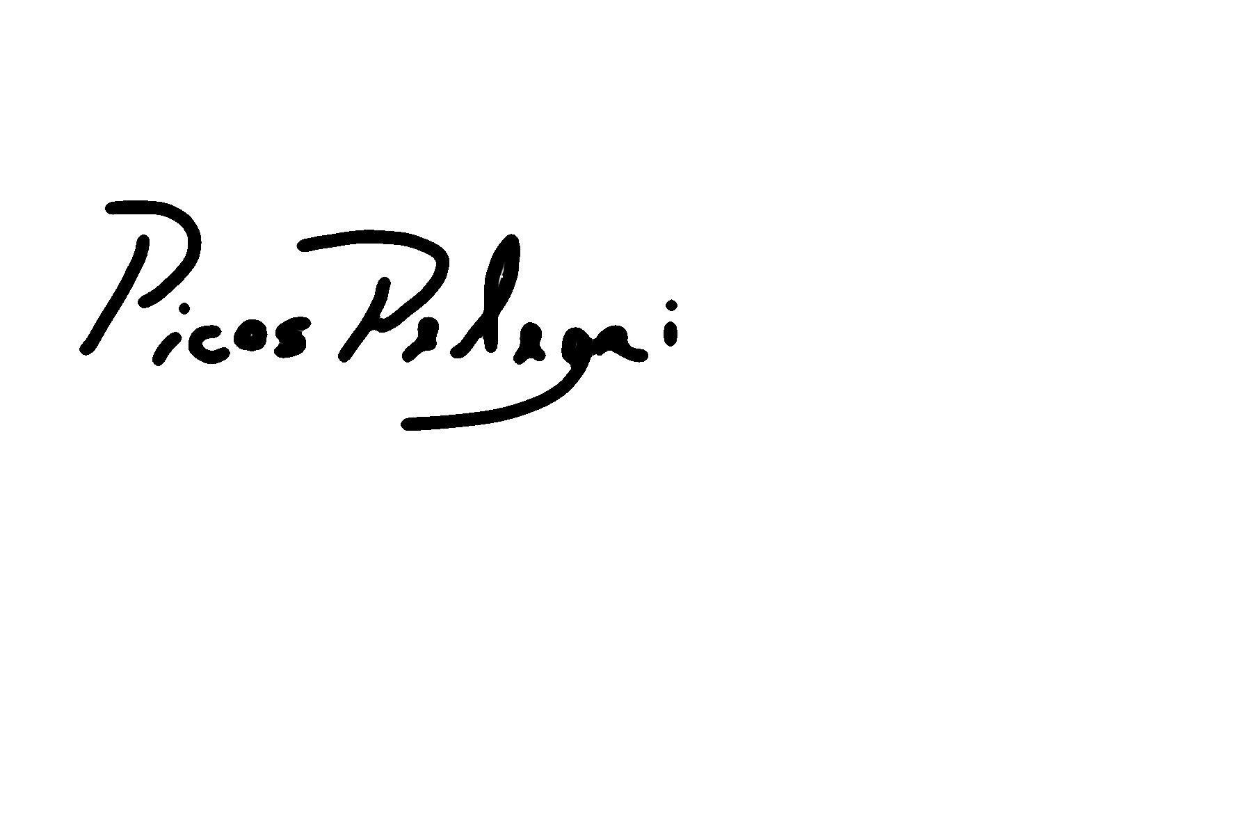 MARIANO PICOS's Signature