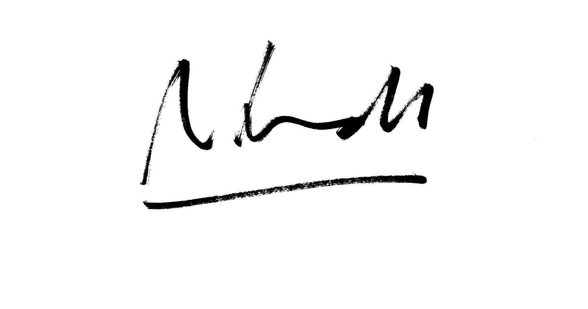 Ana Schmidt's Signature