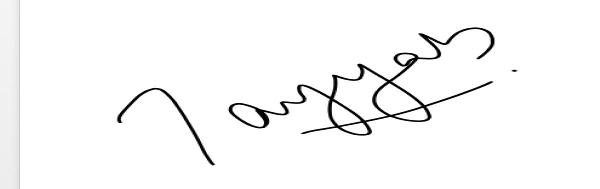 Tayyab Nadeem's Signature
