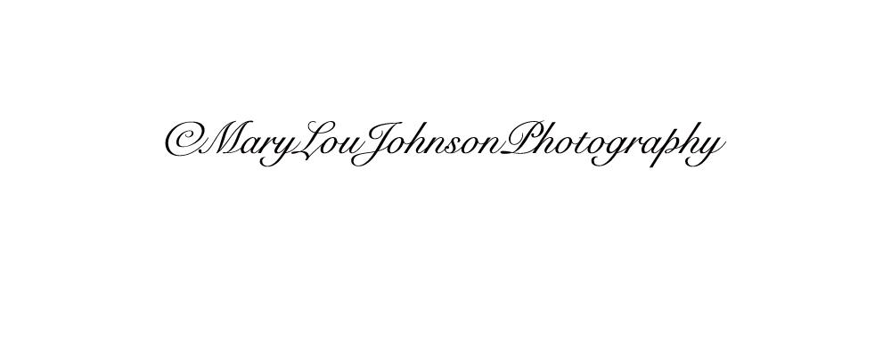Mary Lou Johnson's Signature