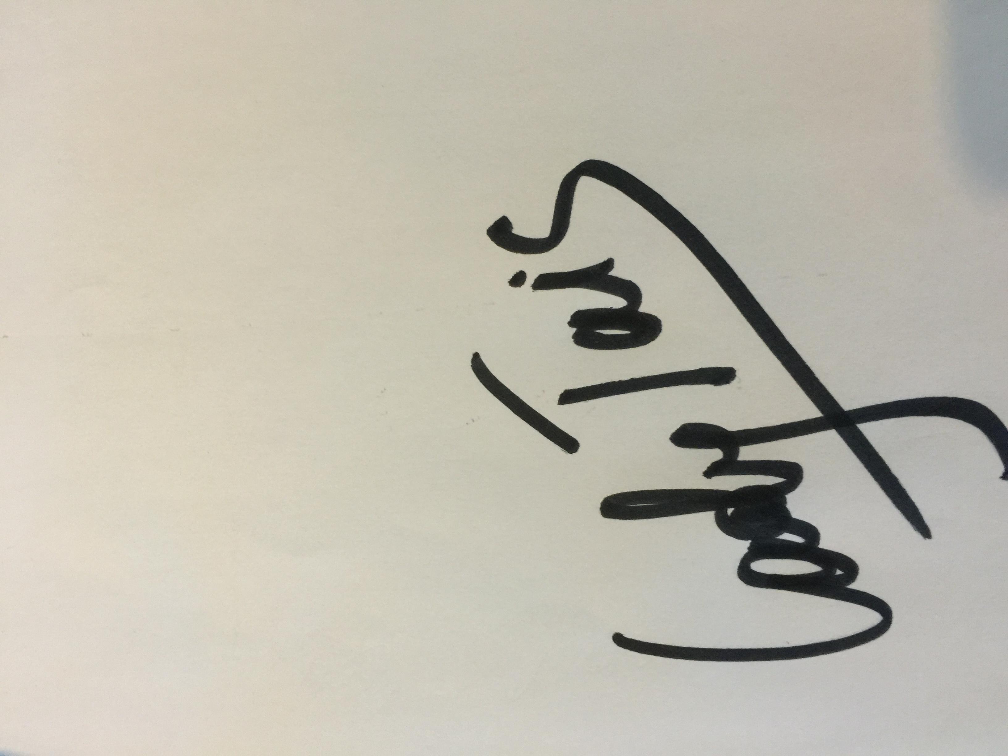 Taisia Novakhova's Signature