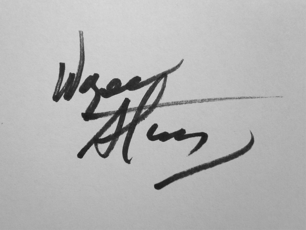 Wayne Stephany's Signature