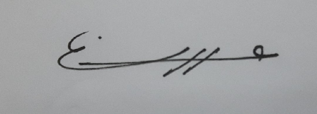 ola yosef's Signature