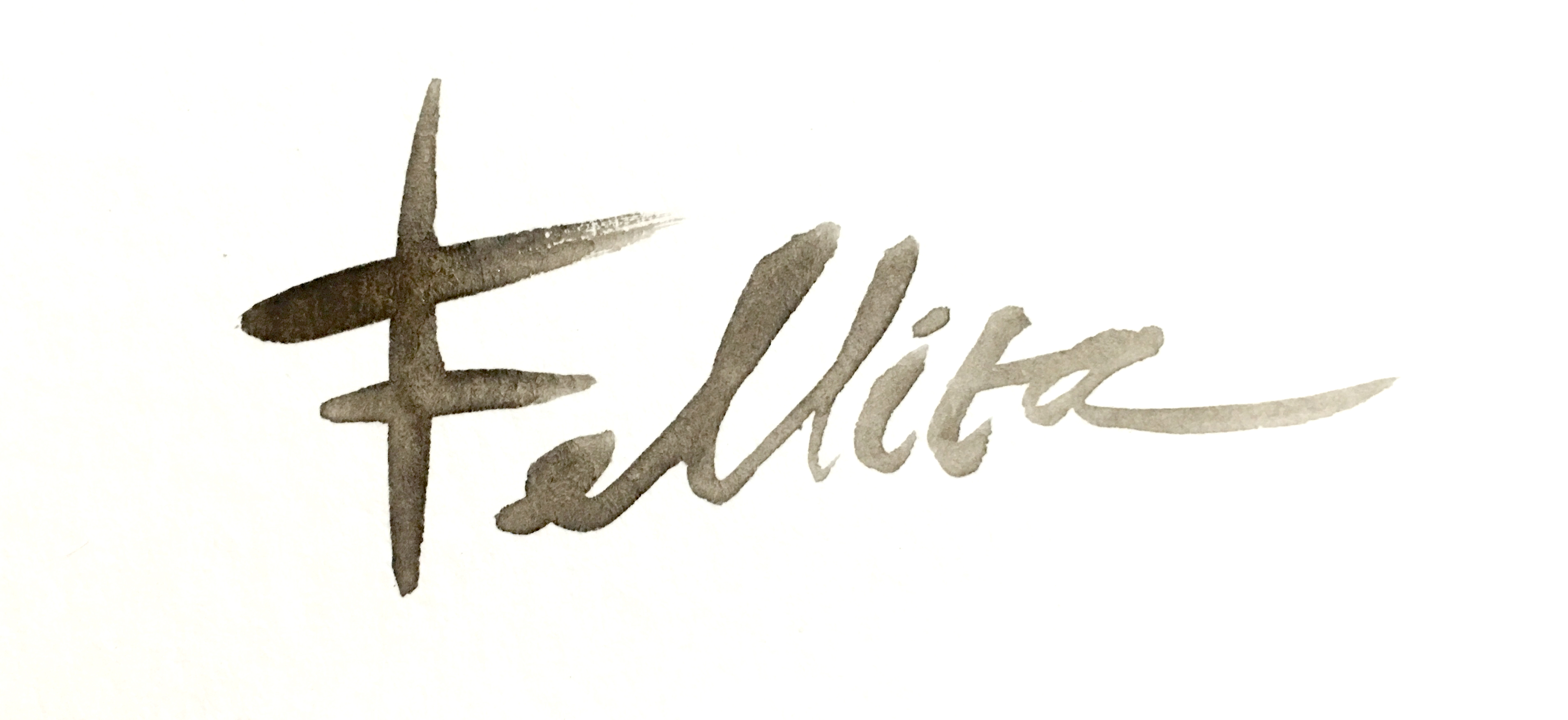 Fellita Priscilla's Signature