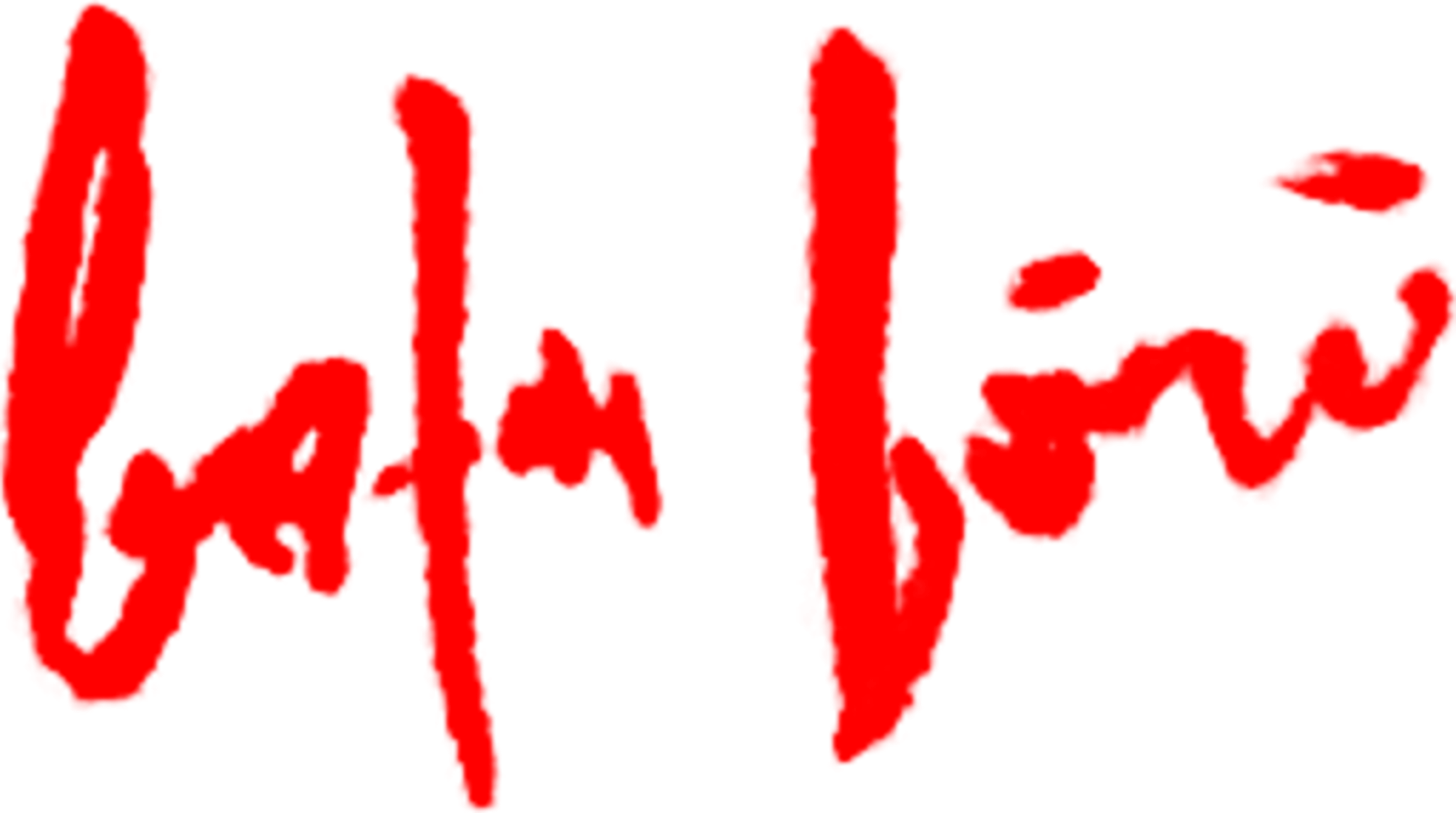 baha boru's Signature