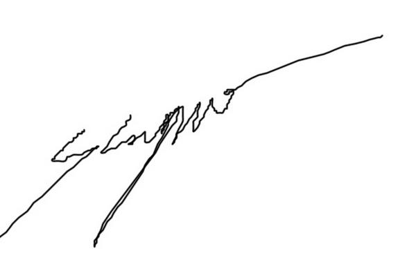 soetam rizky's Signature