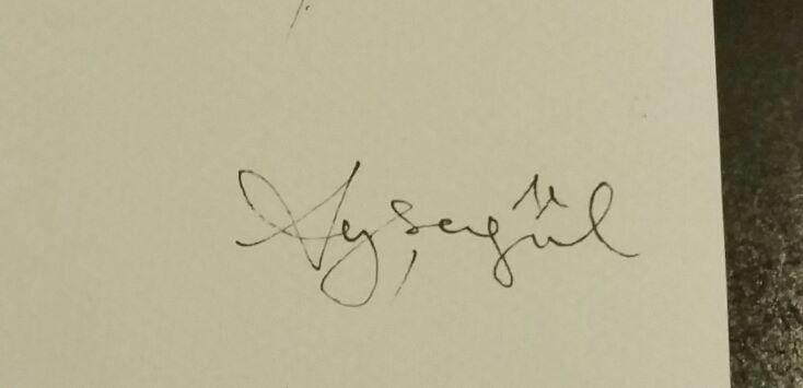 aysegul tasdemir's Signature