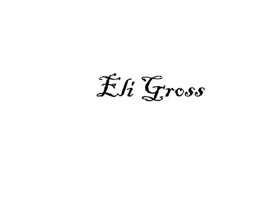 Eli Gross's Signature