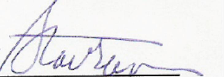 D Stavrum's Signature