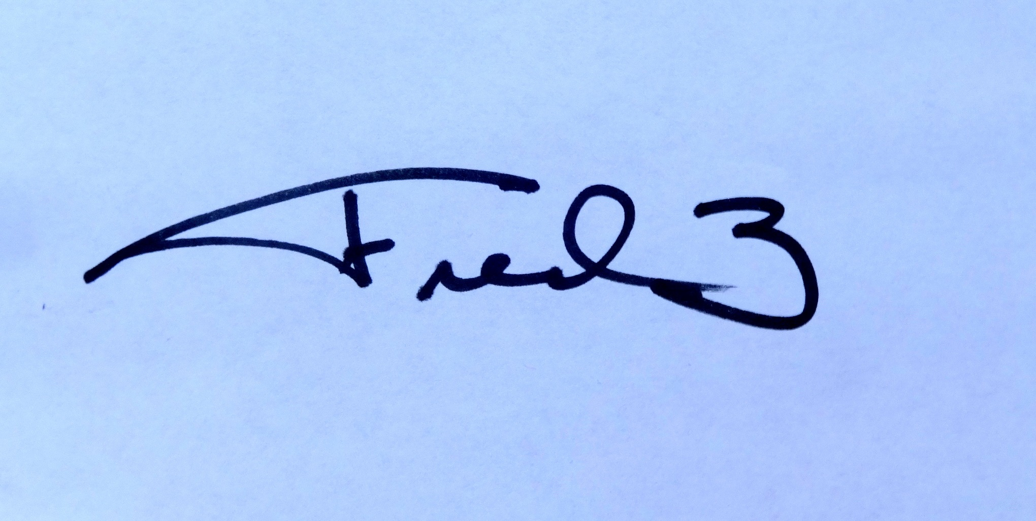 fred wilson's Signature