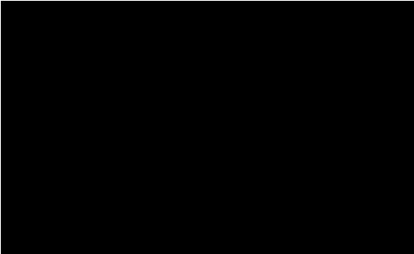 viggo carlsen's Signature