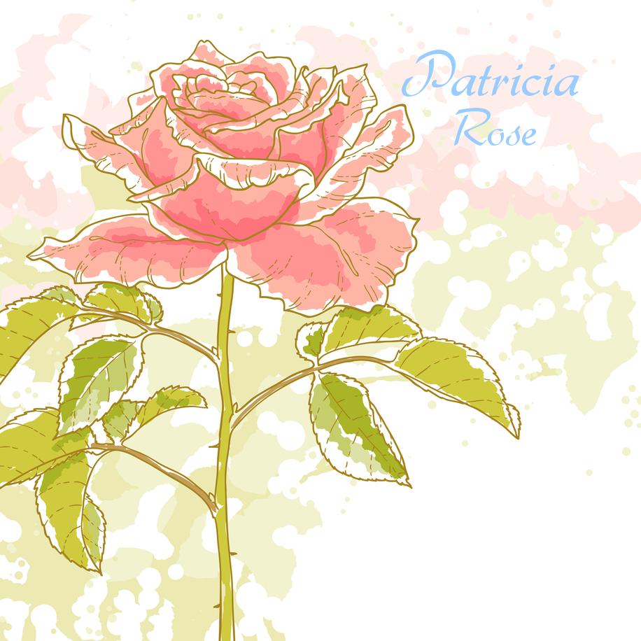 Patricia   ROSE's Signature