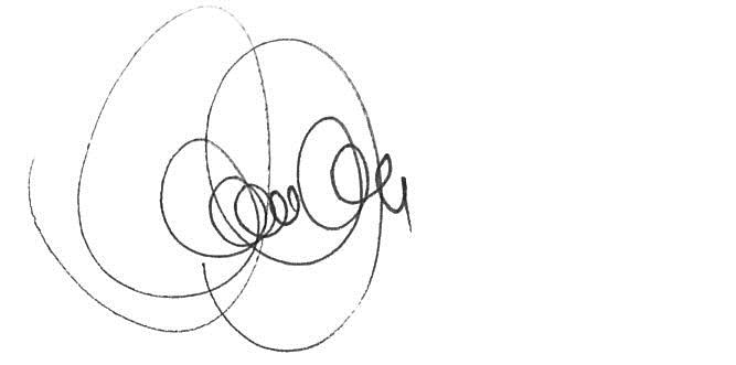 csilla csabai's Signature