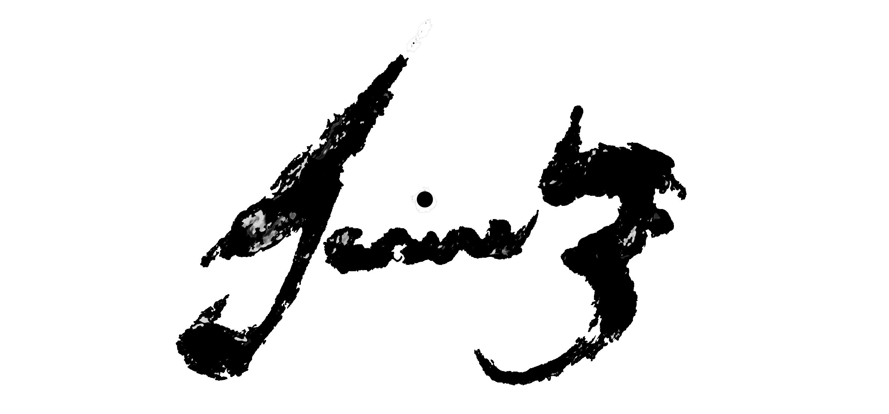 Janine Bouwer's Signature