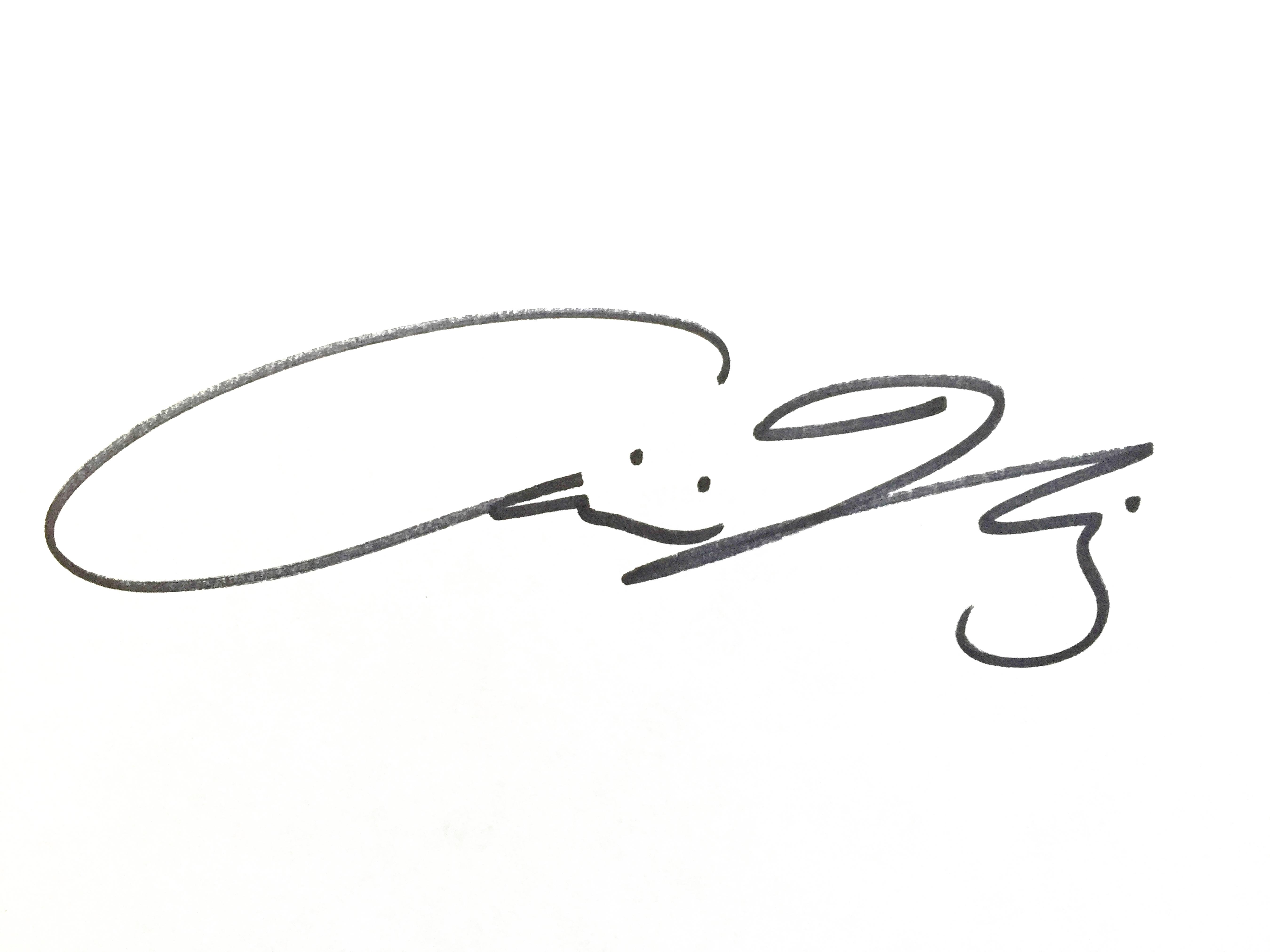 Christina Narwicz's Signature