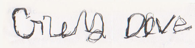 Grey Dove's Signature