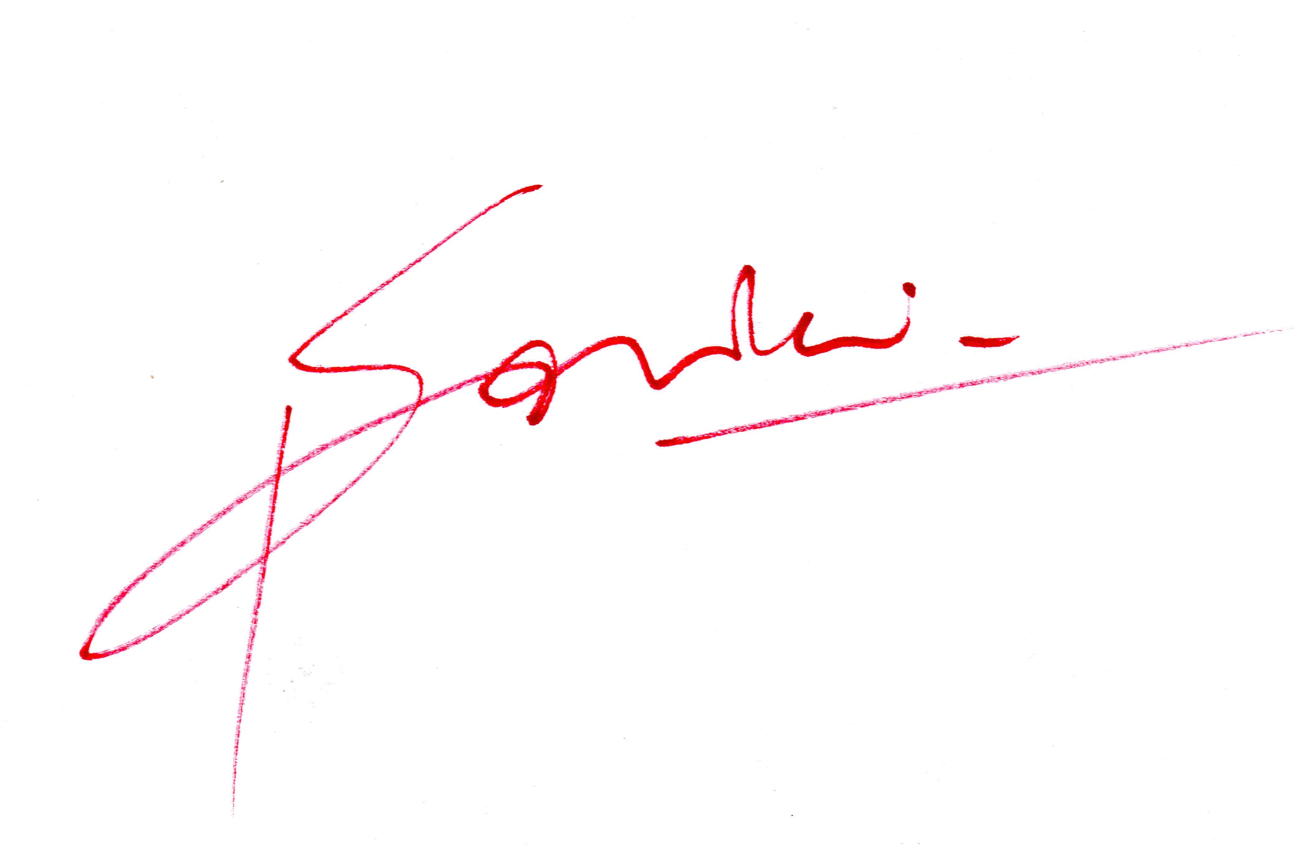 daniela savini's Signature