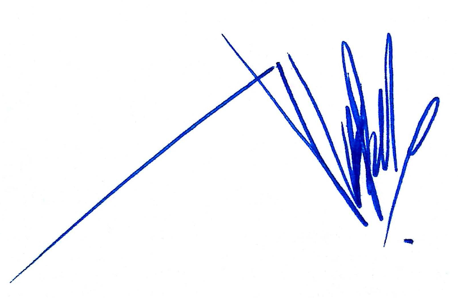 ALEXANDER PRADO's Signature
