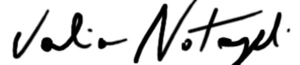 vALERIA NOTARANGELI's Signature