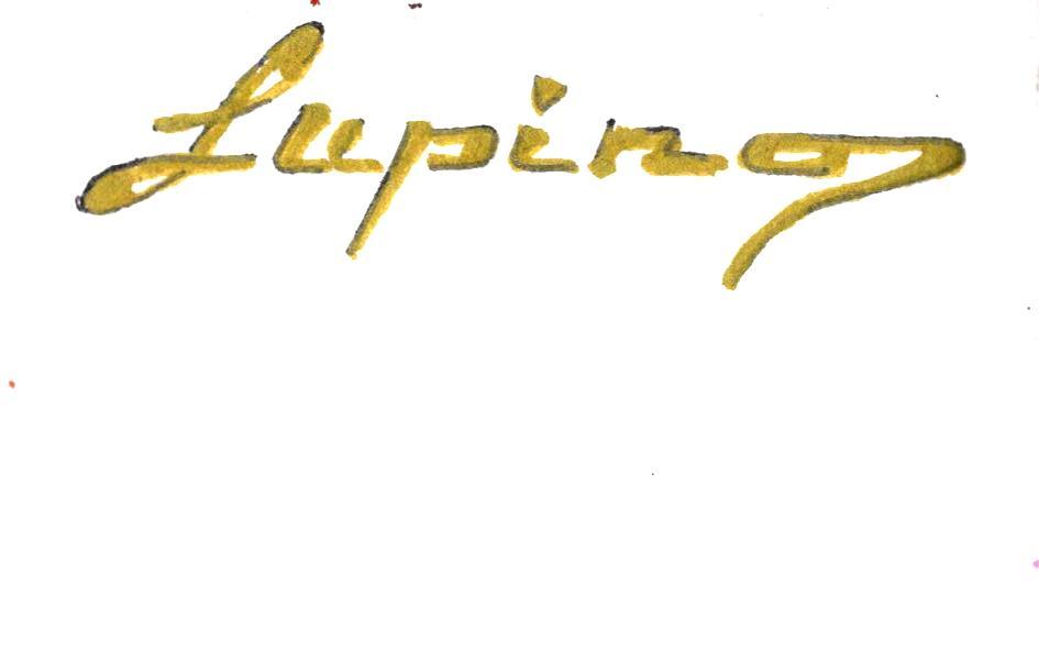 Marian Lupu's Signature