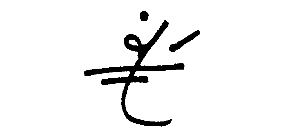 Faith Ferreira's Signature