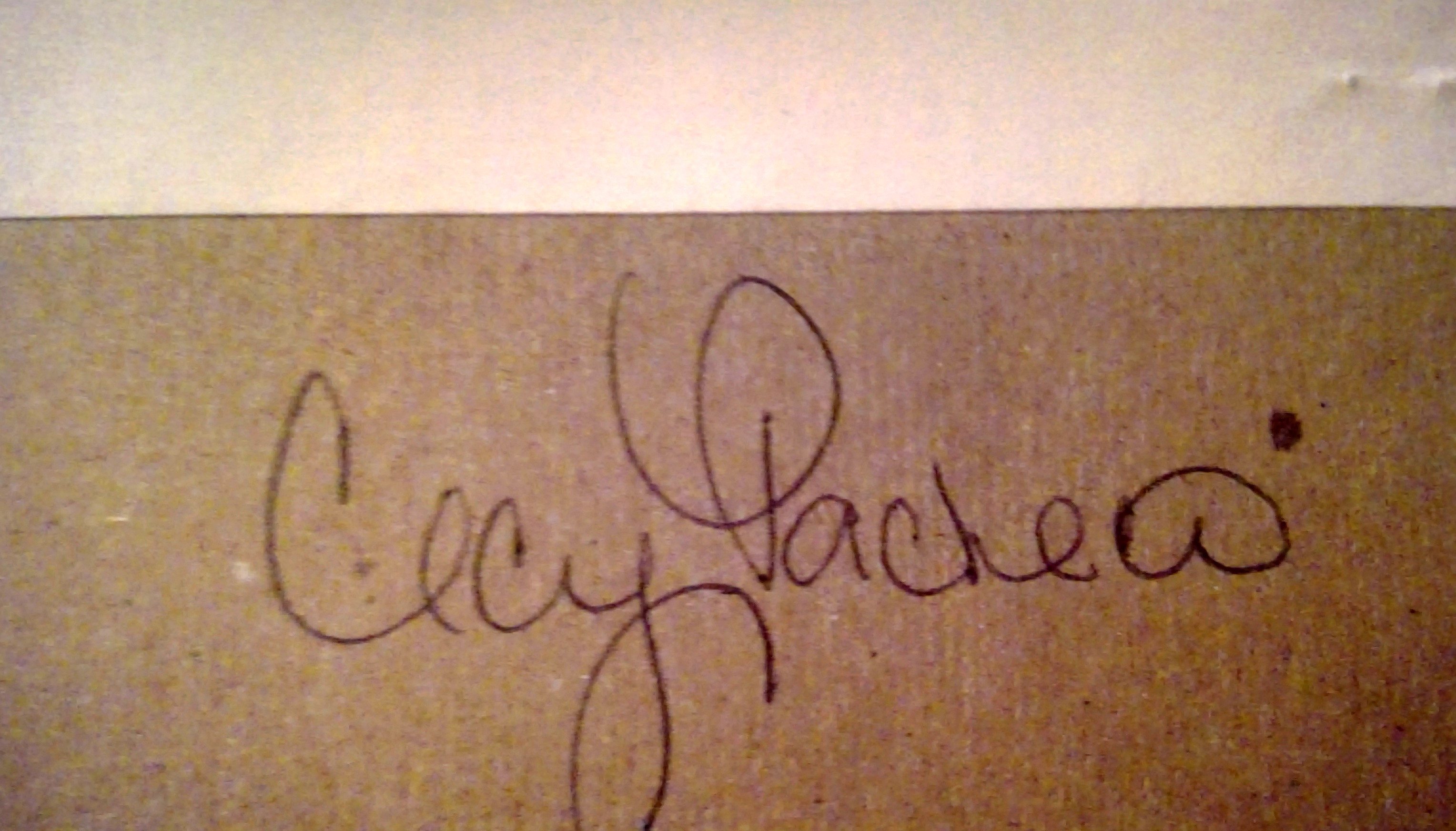 cecy pacheco photography's Signature