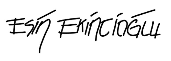 Esin Ekincioglu's Signature