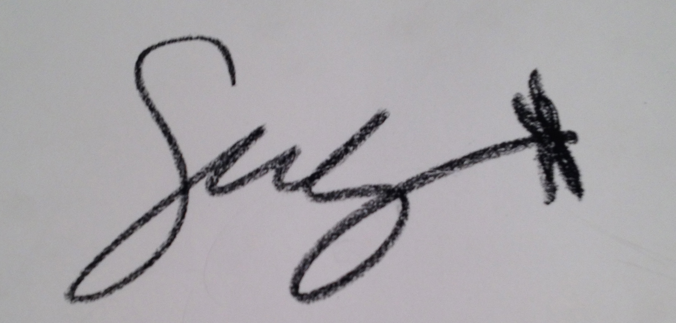 swhaleysart's Signature