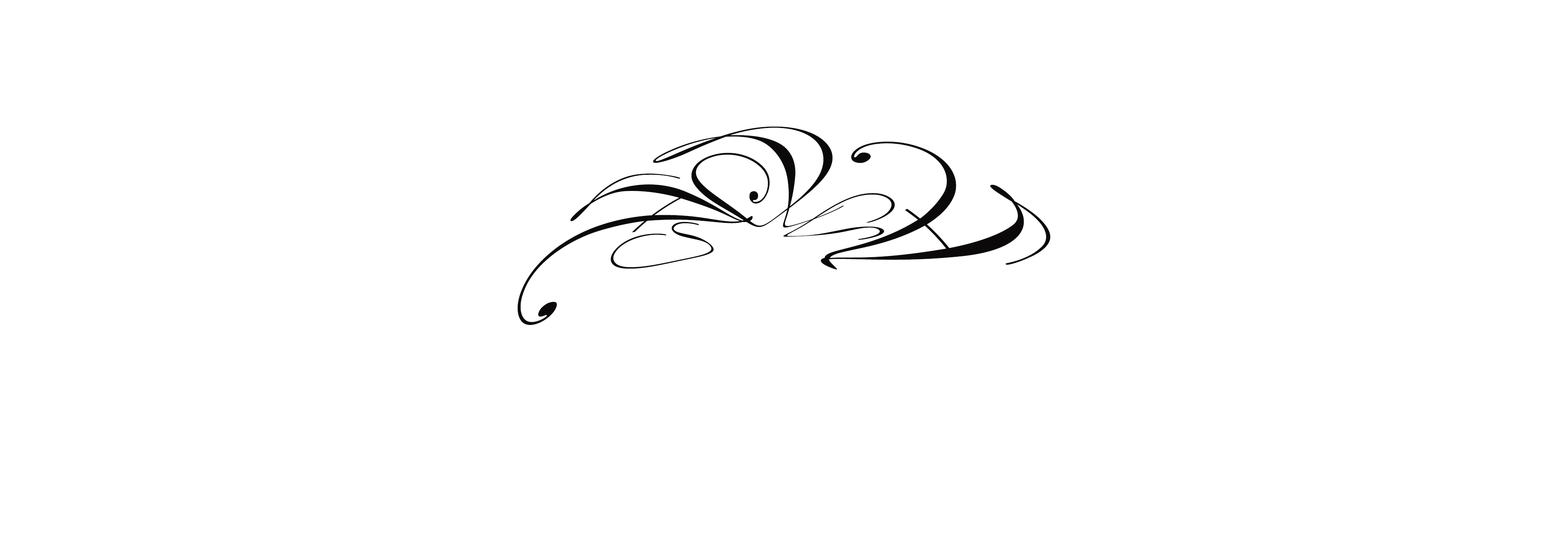 ADA's Signature
