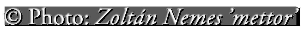 Zoltán 'mettor' Nemes's Signature