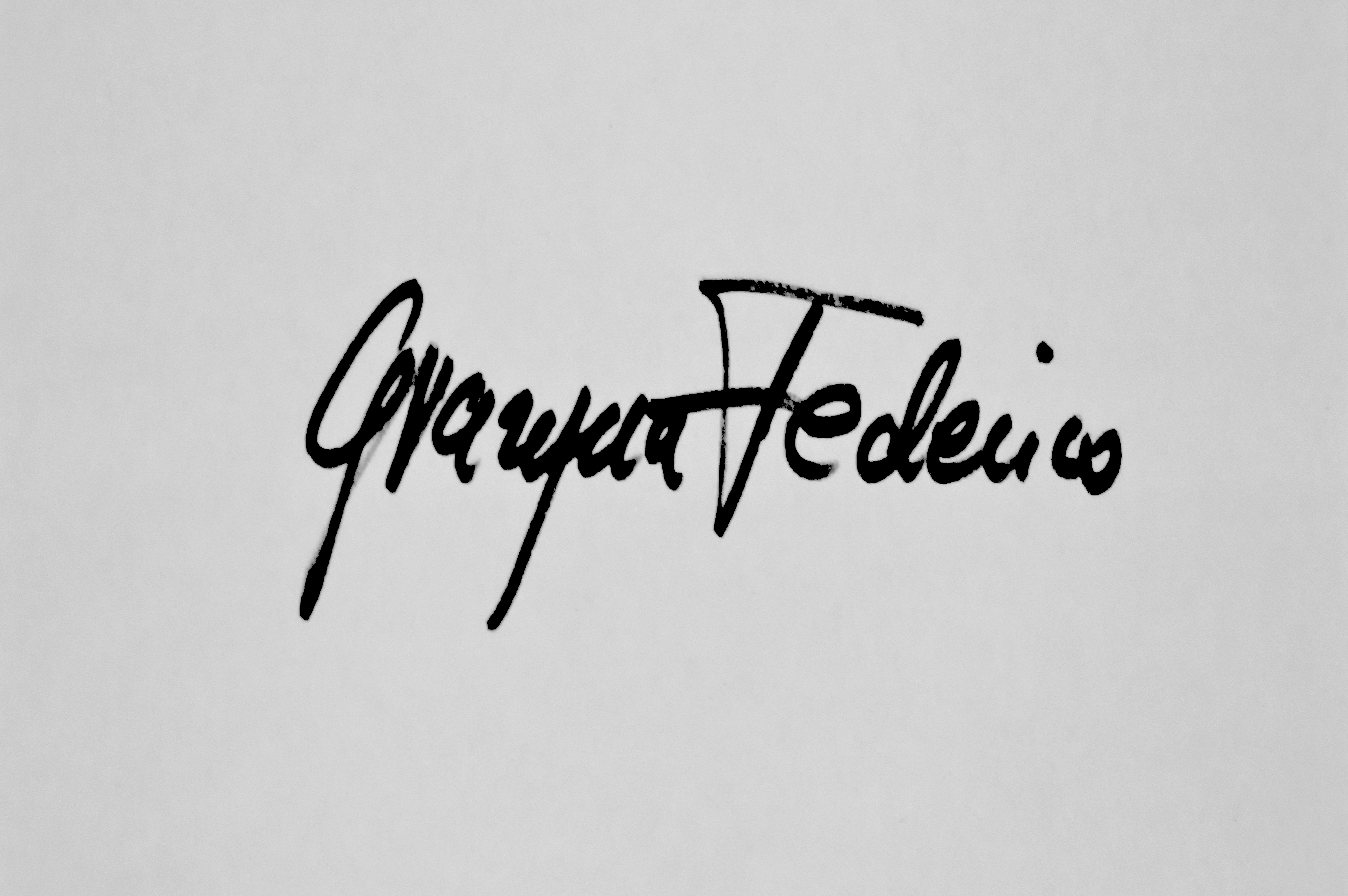 Arte-Federico's Signature