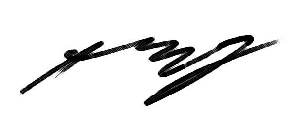 steven myers's Signature
