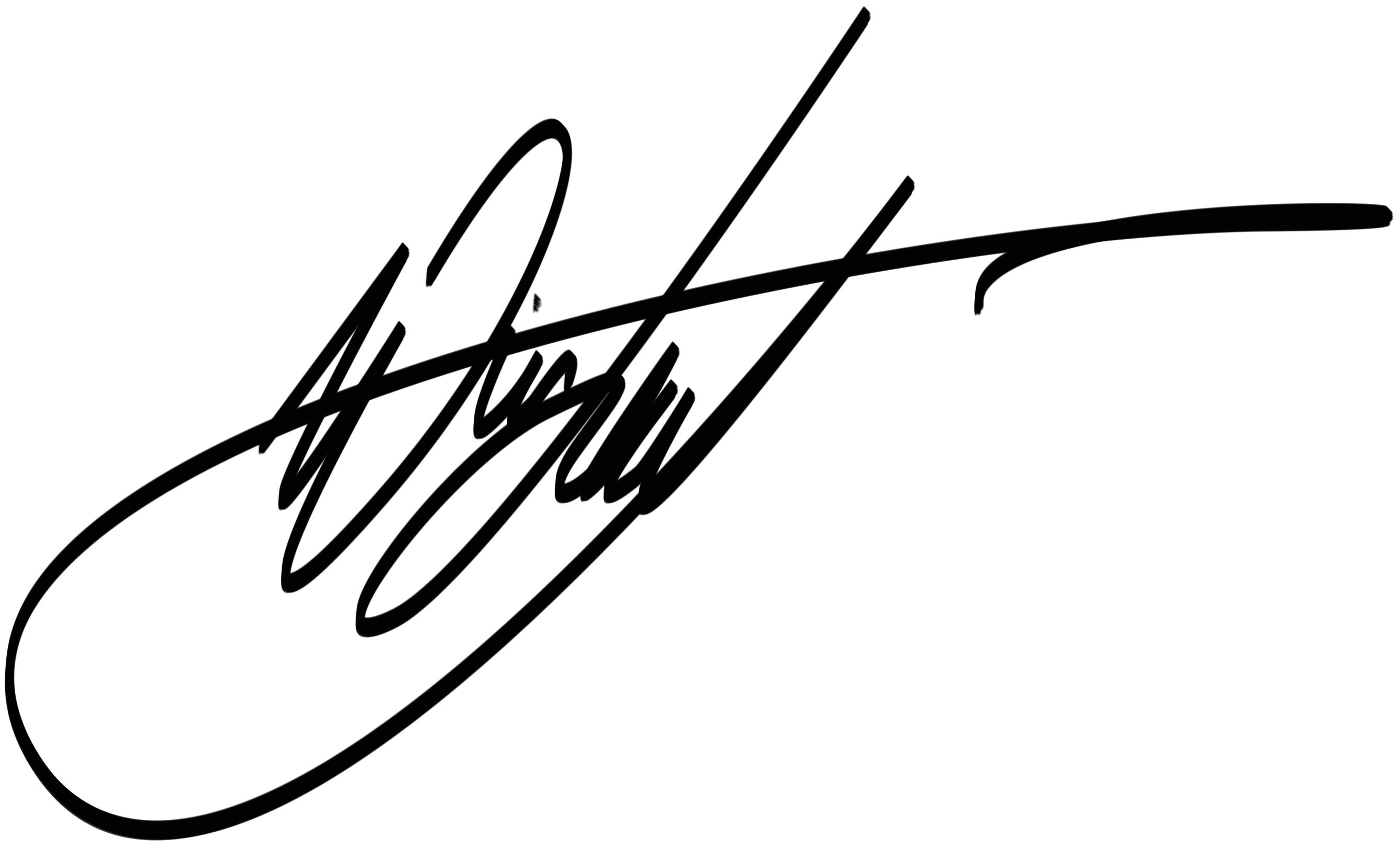 Del / levente wirsz's Signature