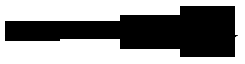 dianne meinke's Signature