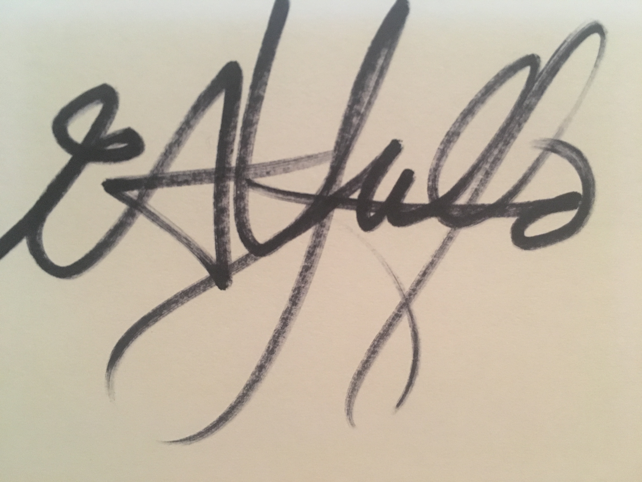 Art.seidenkress's Signature
