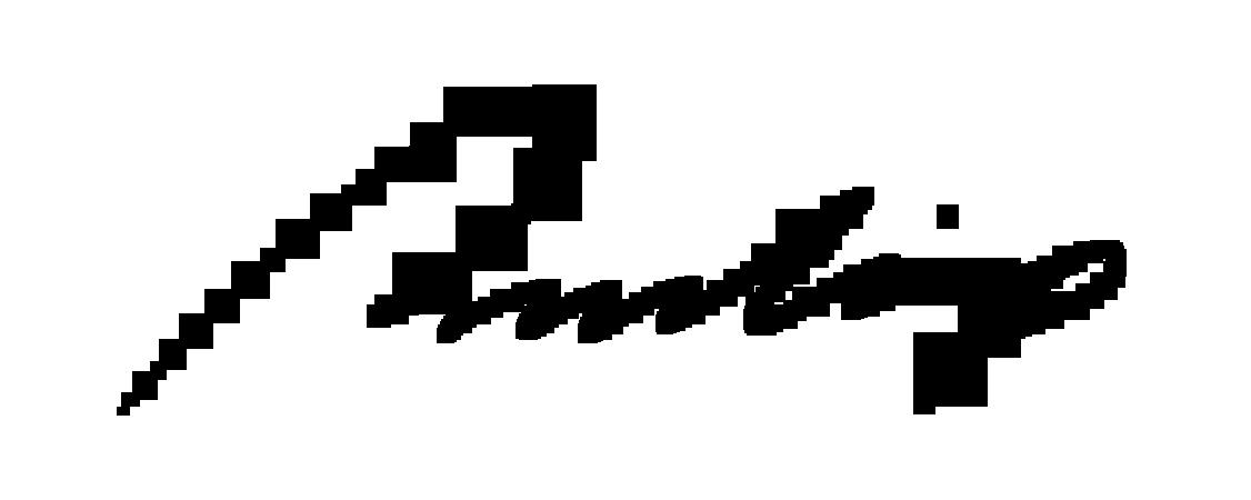 Pradip Sengupta's Signature
