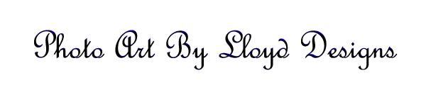 Lloydgoldstein2003's Signature